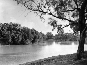 Queensland State Archives 2133 The Thomson River at Longreach March 1938.png