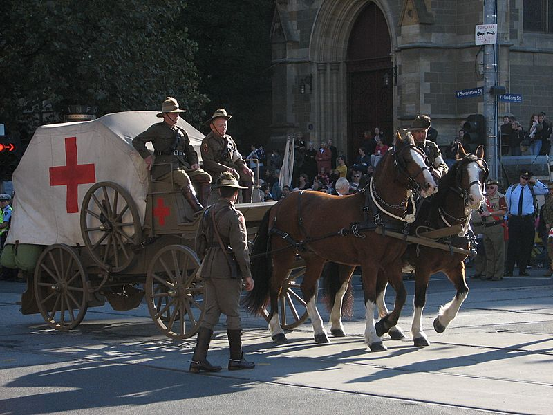 ANZAC Day Parade (500871457)
