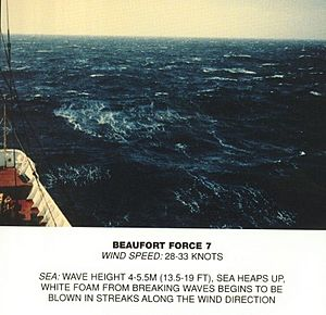 Beaufort scale 7