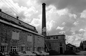 Coldharbour Mill - geograph.org.uk - 1139116