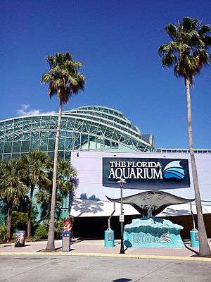 Florida Aquarium Channelside