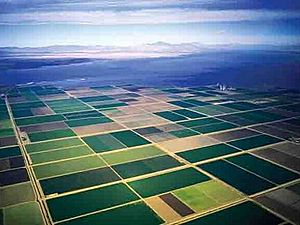 Imperial valley fields