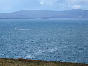 Scapa Flow from Gaitnip cliffs small