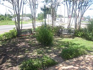 Green space in Coushatta, LA IMG 2409