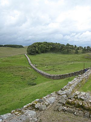 Hadrians Wall from Housesteads1