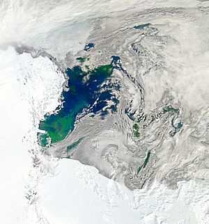 Bloom in the Ross Sea