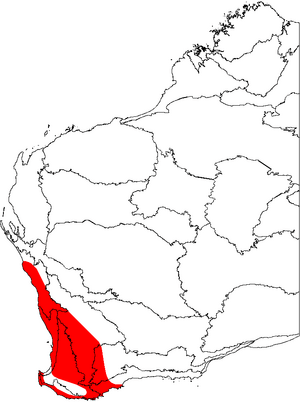 Banksia sessilis map