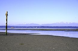 Low tide on Whidbey Island