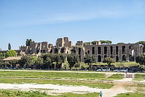 Palatine Hill from across the Circus Maximus April 2019