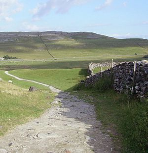 Dry stone wall 20