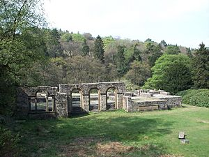 Errwood Hall Ruins - geograph.org.uk - 45024.jpg