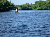 Little Manatee River kayaker