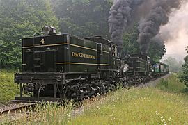 Cass Scenic Railroad State Park - Shay 4 and Shay 11