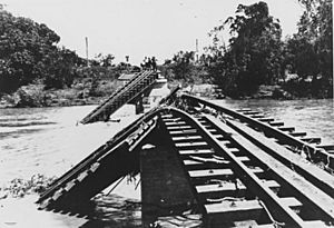StateLibQld 1 99164 Flood damaged railway bridge over the Burdekin River, 1917