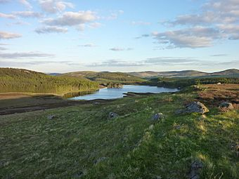 Auchintaple loch from The Knaps.jpg