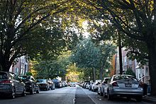 Ditmars Residential Neighborhood in Fall of 2012