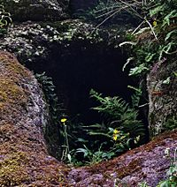 Dunton Cove access, Covenanters artificial cave, Waterside, East Ayrshire