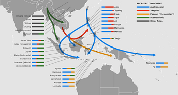 Early stages of the Austronesian diaspora showing best-fit genomic proportions of Austronesian-speaking peoples in ISEA and their inferred population movements