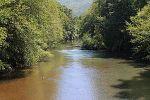Mahanoy Creek in Little Mahanoy Township, Northumberland County, Pennsylvania 1.JPG