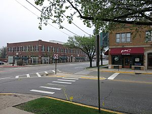Winfield IL Business District