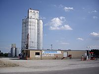 Cooperative Grain and Supply in Lehigh, Kansas