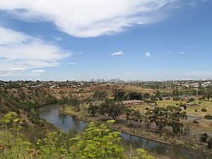 Maribyrnong River at Essendon West
