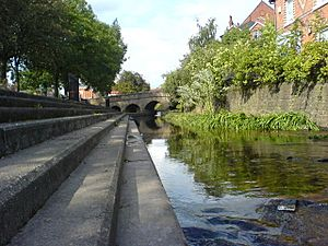 Bulwell Bogs View of Bridge to train station - geograph.org.uk - 582288