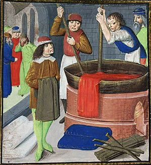 Dyeing British Library Royal MS 15.E.iii, f. 269 1482
