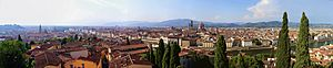 Firenze panorama from the Giardino Bardini