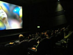 Football match in cinema