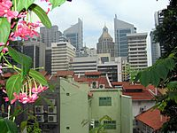 Singapore from Chinatown