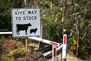 Give Way To Stock (6759026099)