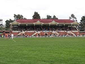 Queen Elizabeth Oval Bendigo VIC