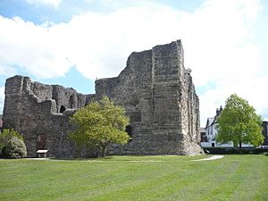 Canterbury castle - geograph.org.uk - 1270897