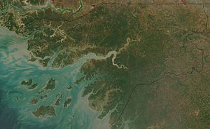 Satellite image of Guinea-Bissau in January 2003
