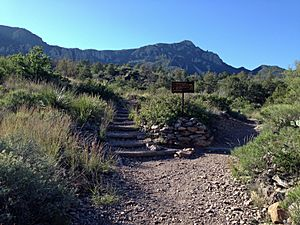 Trail junction and Emory Peak