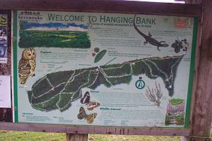 Hanging Bank Information Board - geograph.org.uk - 1549330