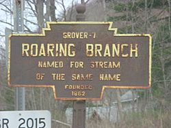 Official logo of Roaring Branch, Pennsylvania