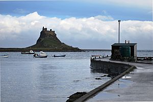 Lindisfarne Castle from Harbour