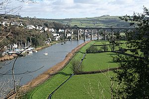 The Tamar downstream from Calstock - geograph.org.uk - 673402