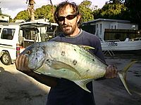 Golden trevally catch