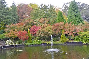 The autumn colour of the Bebeah Private Garden in the town of Mount Wilson, New South Wales