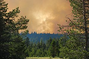 5.18pm, view Angora Ridge Forest Fire from Highway 89, South Lake Tahoe