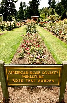 American Rose Society Miniature Rose Test Garden