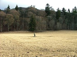 Claverhouse's Stone - geograph.org.uk - 1752659