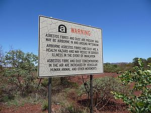 Govt Warning - Wittenoom WA