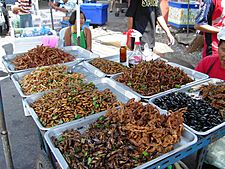 Insect food stall