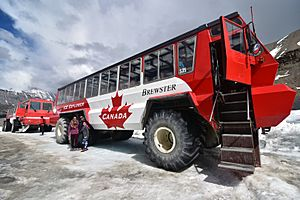 Tourist Bus at Columbia Icefields
