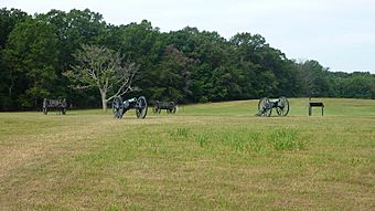 Union Howitzers Henry Hill.JPG