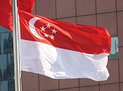 2012 Flag of Singapore Photo